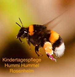 Kindertagespflege Hummi Hummel Rosenheim - Ihre Tagesmutter mit Herz in Rosenheim